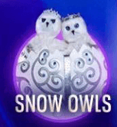 Snow Owls is out on The Masked Singer